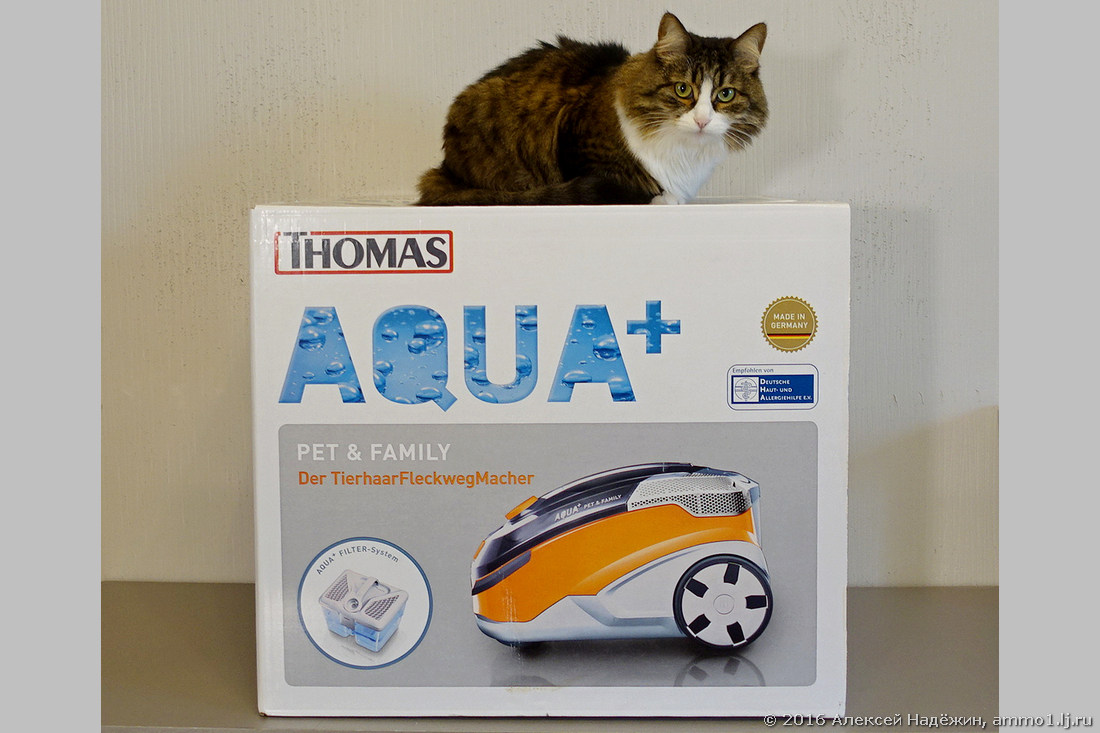 thomas aqua pet family. Black Bedroom Furniture Sets. Home Design Ideas